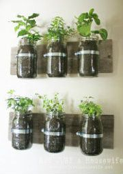 mason-jar-planter-board-747x1024